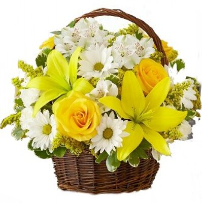 Dill's Happy Memories Basket from Dill's Floral Haven, local florist in Belleville, IL